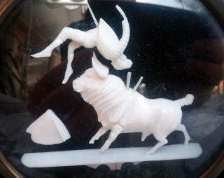 Bild Stier Stierkämpfer Bein Knochen Bild