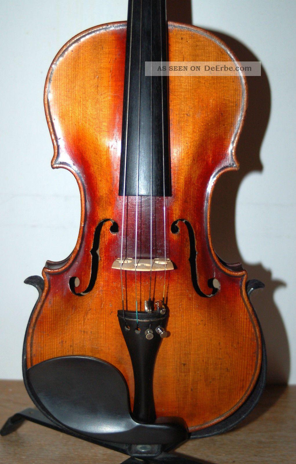Alte Geige Mit Löwenkopf Spielfertig Lieferung Frei Haus