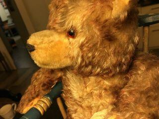 Alter Teddy Mit Holzwolle Füllung,  Rötliches Fell,  Inklusive Holzstuhl Bild