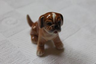 Goebel W.  Germany Porzellan Hund Boxer Welpe Sitzend Bild