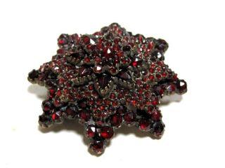 Biedermaier: Mehrstufige Granatbrosche Mit Blutroten Granaten 6t4948 Bild