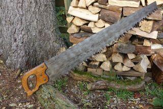 Kräftige Ein - Mann Schrotsäge,  Brennholzsäge,  Handgeschärft,  1 Man Cross Cut Saw Bild