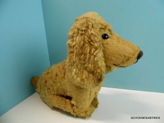 Alter Grosser Hund Peluche France Shabby Vintage Um 1930 Bild