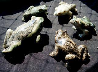 Frosch,  Frog,  Froschkönig,  Frog King,  Dolomit,  Brasilien,  A,  2050 Gramm Bild