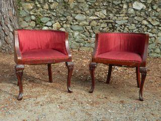 2 X Salon Sessel Stuhl Louis Philippe Um 1850 Avignon Biedermeier Bild