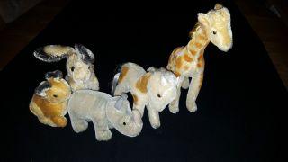Steiff 5 Tiere Konvolut Top Ansehen Giraffe Nashorn ' Nosy ' Pony Und 2 Hasen Bild