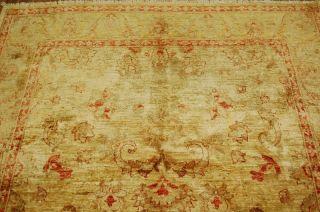 Wunderschöner Ziegler Teppich Ca: 264x160cm Frisch Gewaschen Bild