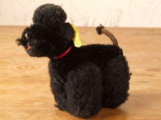 Kleiner Pudel Steiff Hund 60er Jahre Spielzeug Bild
