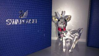 Swarovski Baby Rentier Reindeer 5000424 Bild