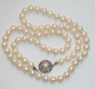Jugendstil Echte Perlen Kette Perlenkette 333er Gold Verschluß 32 Gr.  Top Bild