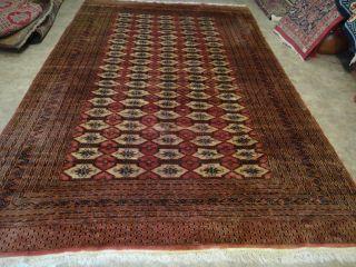 Sehr Schönem Handgeknüpfte Teppiche Buchara 325 X 220 Cm Bild
