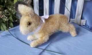 Steiff Springender Hase,  12 Cm,  Kf /steiff Rabbit,  12 Cm,  Ids Bild