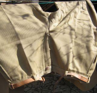 Hose Mit Gürtel (hellbraun) - Herrenbekleidung (ca.  1970) Bild