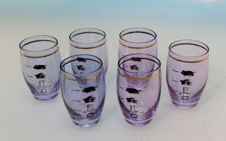 6 Alte Schnapsgläser Scherzgläser Alexandritglas Mit Lustigen Einteilungen Bild