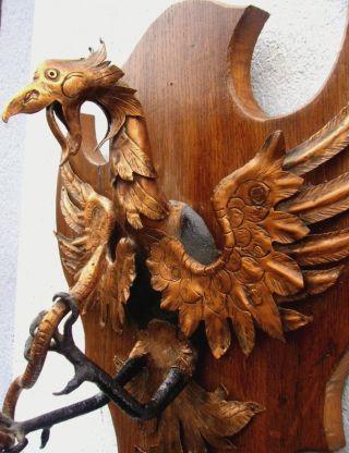 Antikes Holz Schild Kupfer Ader Mit Schlange 19jhd Handgetrieben Wappen Skulptur Bild