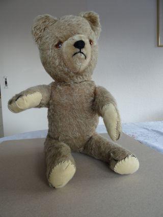 Antiquarischer Teddy Bär Mit Brummstimme Aus Den 60ziger Jahren Bild
