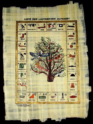 Echtes Farbiges Orig Papyrus - Bild Aus Ägypten Ca 25 X 33 Cm Motiv Lautzeichen Bild