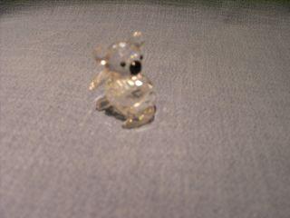 Kristal Figur Koala Bär Mit Schwarzen Augen & Nase Von Swarowski - Würfel Signatur Bild