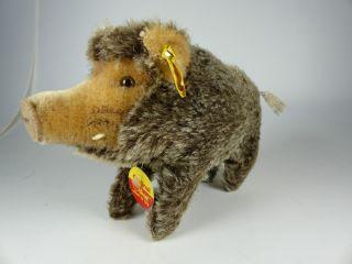 Steiff 2670/15 Wildschwein