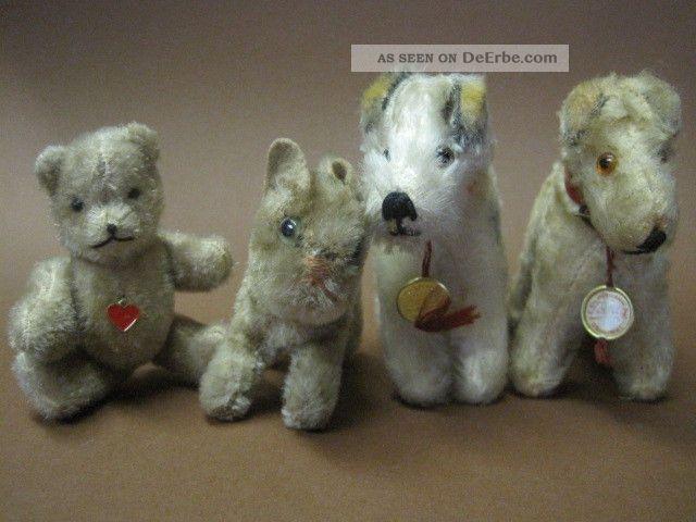 Konvolut Alte Teddy Hermann Steiff Tiere: 2 X Terrier 1 X Katze Und 1 X Bär Stofftiere & Teddybären Bild