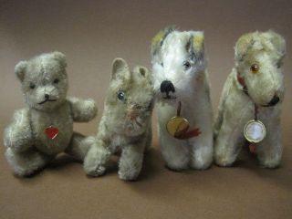 Konvolut Alte Teddy Hermann Steiff Tiere: 2 X Terrier 1 X Katze Und 1 X Bär Bild