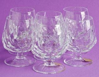 Nachtmann Kristall / Alexandra ? / 6 Cognac Gläser / Bleikristall / 9,  5 Cm / Top Bild