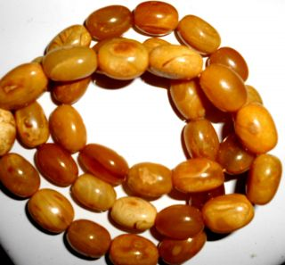 Antik 61 G Butterscotch Necklace Bernsteinkette Baltic Amber Bernstein Kette 老琥珀 Bild