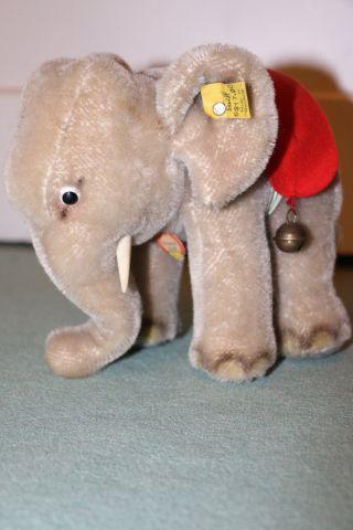 Steiff Elefant 1959 - 1967,  Knopf,  Fahne,  Schild, Bild