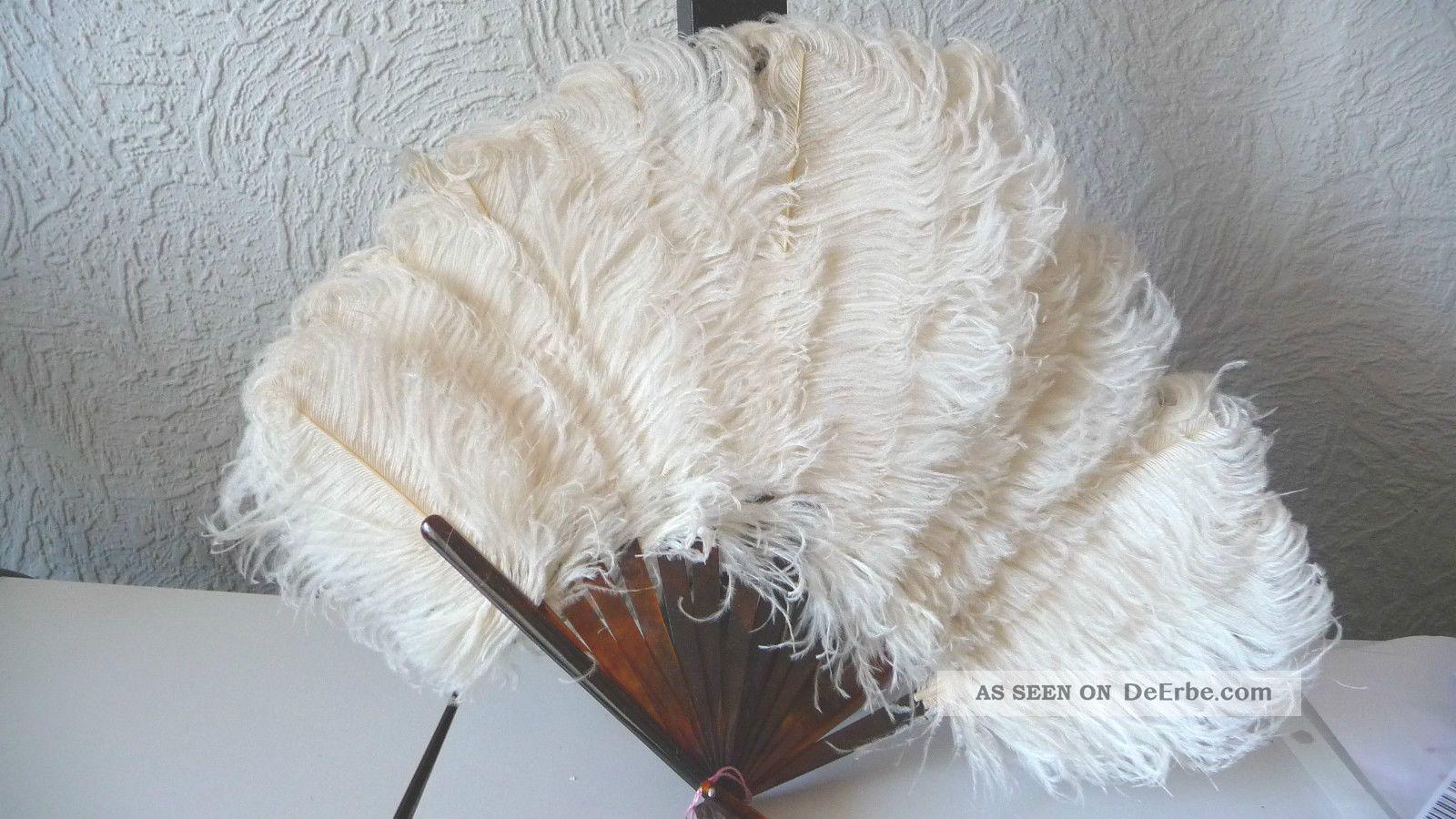 Antiker Fächer,  Absolut Rar Straußenfedern Weiß Und Echtem Schildpatt,  Perfekt Accessoires Bild