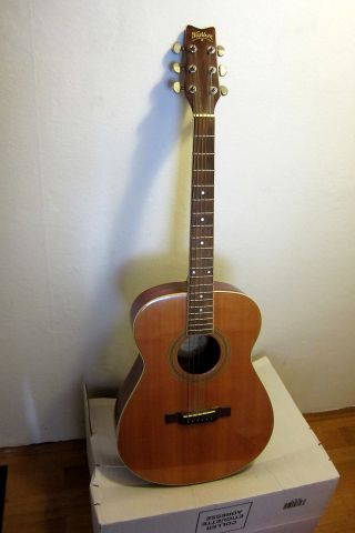 Gitarre _ Washburn F - 21 S _ca.  1995 _folk Style_top Acoustic Guitar Bild