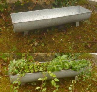 Pflanzschale Dachrinne Zuber Gartendeko Garten Metall Antik Landhausstil Bild