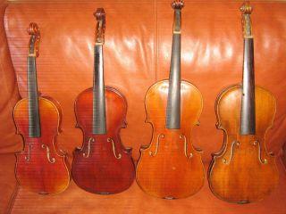 4 Alte Geigen 4 Antique Violins 4 Old Violins Bild
