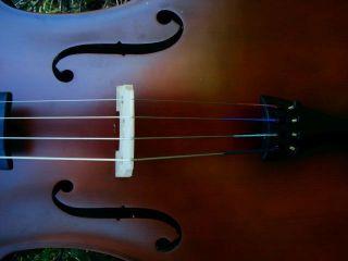 Sehr Schönes Cello 4/4 Mit Bogen In Gepolsterter Tasche Bild