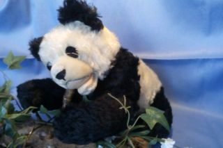 Steiff Floppy Panda,  28 Cm/ Steiff Floppy Panda,  28 Cm Bild
