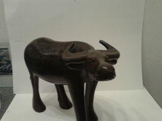 Wasserbüffel Aus Hartholz Geschnitzt Wooden Water Buffalo Bild