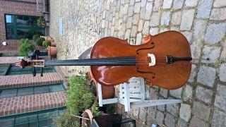 Schönes 4/4 Cello Inklusive Gepolsterter Tasche,  Deko Bild