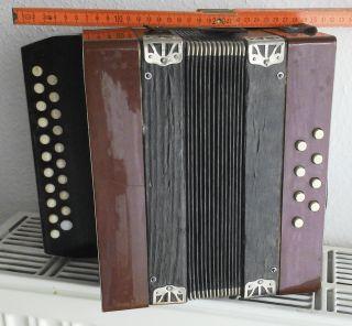Altes Akkordeon,  8 Basstasten,  Um 1950 Bild