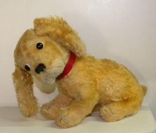 Steiff Hund Ean 3328 - 03 Silberner Knopf Und Fahne Mohair Holzwolle 36cm Lang Bild