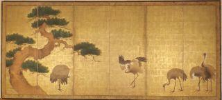 Sechsteiliger Stellschirm Japan,  Frühe/mittl.  Edo - Periode - 5 Kraniche Und Kiefer Bild