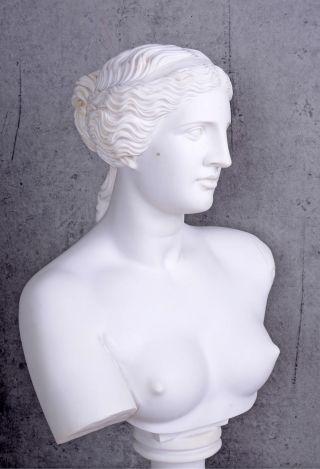 Marmor Alabaster Büste Frauenkopf Venus Von Milo Frauenbüste Antike Bild