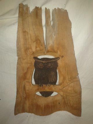Schnitzerei,  Wandbild,  Bild,  Relief Aus Teak,  Eule,  Uhu,  Kauz,  Vogel,  Holz Bild