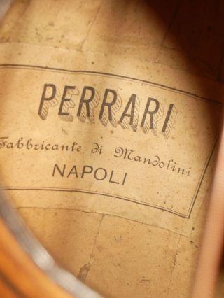 Alte.  Mandoline Perrari Napoli Bild