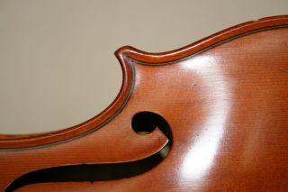Meisterliche 4/4 Geige,  Violine,  Traumhaft Schön,  Mit Zettel Bild
