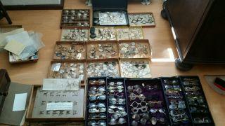 Brillensammlung Zwischen 1900 Und 1940 Ca 220 Gestelle Bild