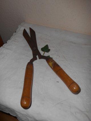 Alte Handheckenschere Holzgriffe Bild