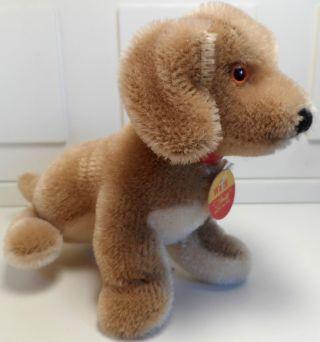 Origina Steiff Miniaturen - Hund Waldi -