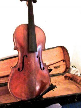 Schöne,  Alte Geige,  1 Geigenbogen,  Geigenkasten Bild