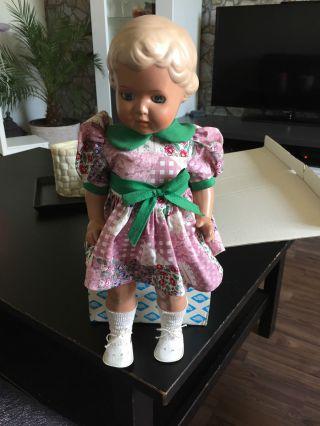 Schildkröt Puppe Ursel Bild
