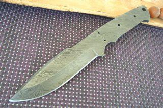 Damast Klinge Damast Messer Damaszener Stahl Klinge Blank Blade Damastklinge Bild