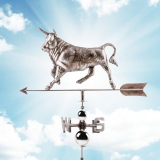 Wetterbulle Wetterfahne 2d Bulle Windspiel Wetterbulle Stahl Nswe - Anzeige Bild